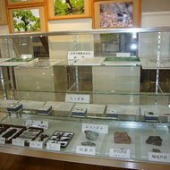 旭川の自然展示コーナー