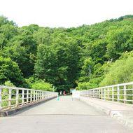 チノミシリルイカ橋 駐車場からこの橋を渡ると嵐山公園センター(北邦野草園)です。