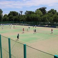 テニスコート(花咲スポーツ公園)
