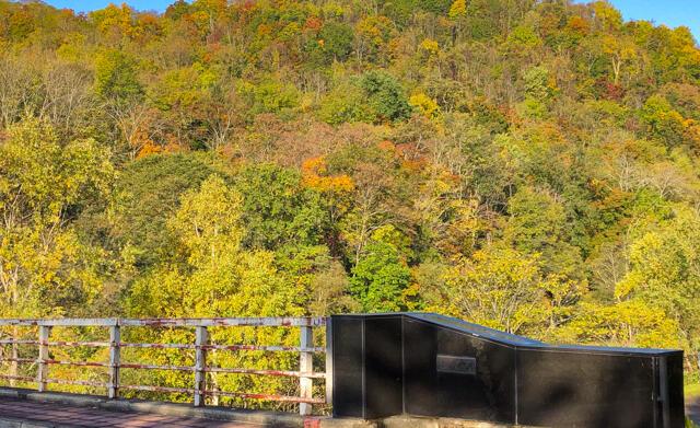 arashuyama_autumn_leaves_2019_10_10.jpg