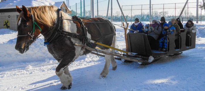 horse_show_winter_info_2019_001.jpg