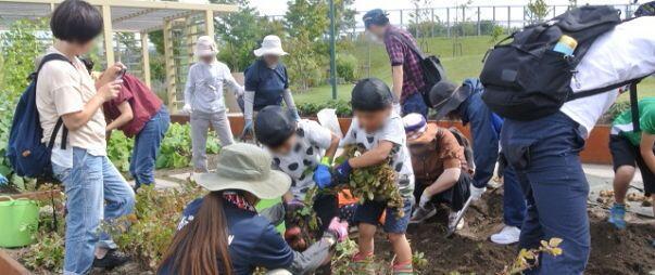 kitasaito_autumn_garden_2020_007.JPG