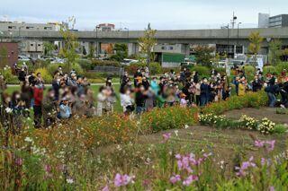 kitasaito_autumn_garden_2020_09_27_006.jpg