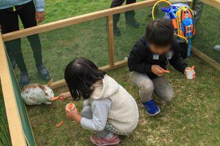 kitasaito_autumn_garden_2020_09_27_010.jpg