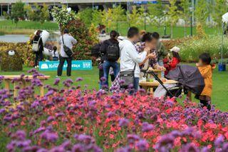 kitasaito_autumn_garden_2020_09_27_024.jpg