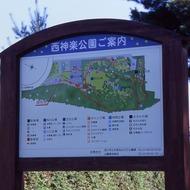 西神楽公園ご案内