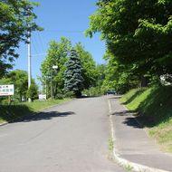 駐車場(緑のセンター入口)
