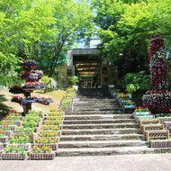 緑のセンター(正面玄関)