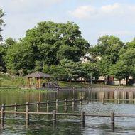 千鳥が池に浮かぶボート