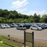 公園駐車場(旭山動物園へのお客様で混雑します。)