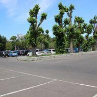 駐車場(テニスコート横)