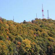 麓から見た紅葉