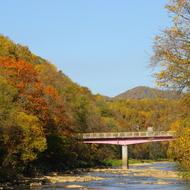 紅葉(チノミシリルイカ橋下流から)